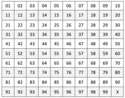 nummerbord bingo