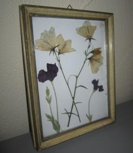 bloemen_drogen_en_inlijsten_2